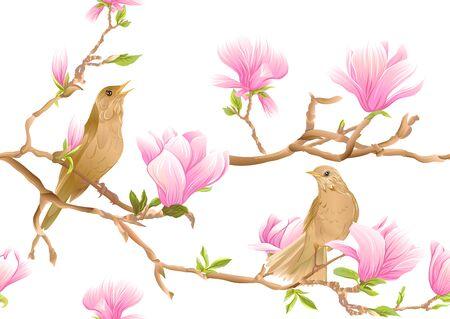 Magnolia Tree Branch mit Blumen und Nachtigall Nahtloses Muster, Hintergrund. Farbige Vektorillustration. Isoliert auf weißem Hintergrund..