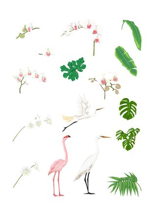 Set of tropical plans, flowers and birds. Isolated on white background in neon, fluorescent colors. Stickers, elements for design. Colored vector illustration. Stock Illustratie