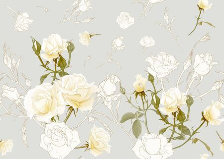 White roses seamless pattern. On beige background. Colored and outline design. Vector illustration.