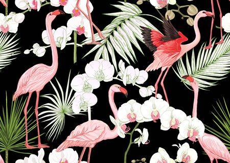 Tropical plants and flowers and birds. Seamless pattern, background. Colored and outline design. Vector illustration. Isolated on black background.. Stock Illustratie