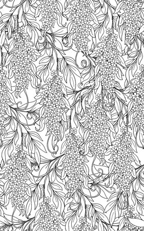 Seamless pattern, background with acacia. Outline hand drawing vector illustration. Vector illustration.