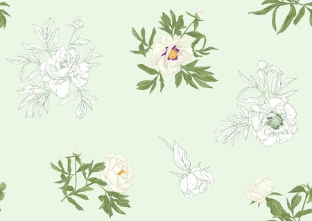 White peony flowers. Seamless pattern, background. Colored and outline design. Vector illustration. In botanical style On tea green background.. Banco de Imagens - 133738162
