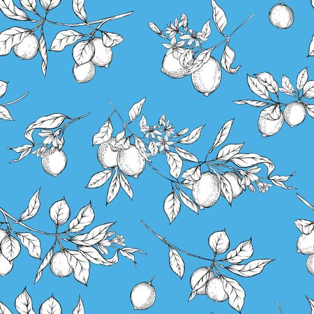 Lemon tree branch with lemons, flowers and leaves. Seamless pattern, background. Outline hand drawing vector illustration in black, white and blue colors.