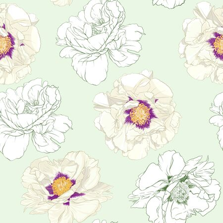 White peony flowers. Seamless pattern, background. Colored and outline design. Vector illustration. In botanical style On tea green background.. Banco de Imagens - 133738252
