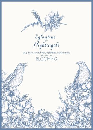 Dog-rose, briar, brier, eglantine, canker-rose and nightingale. Template for wedding invitation, greeting card, gift voucher. Graphic drawing, engraving style. Vector illustration in blue and white.