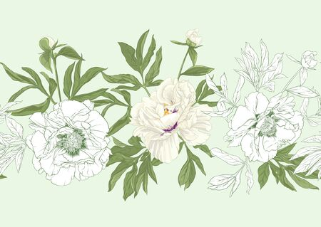 White peony flowers. Seamless pattern, background. Colored and outline design. Vector illustration. In botanical style On tea green background..