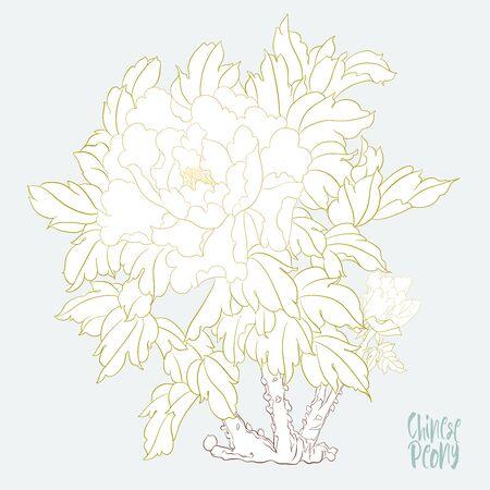 Ramo di peonia con fiori nello stile della pittura cinese su seta. Elementi per il design. Illustrazione vettoriale colorata. Isolato su sfondo bianco..
