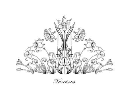Narcissus. Set of elements for design Outline hand drawing vector illustration. In art nouveau style, vintage, old, retro style..