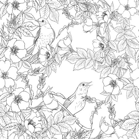 Seamless pattern, background with dog-rose, briar, brier, eglantine, canker-rose . Template for wedding invitation, greeting card, gift voucher. Graphic outline drawing, Vector illustration.