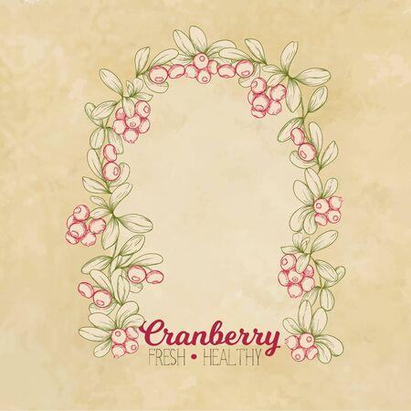 Cranberry. Element for design. Good for product label. Colored vector illustration. On kraft paper background. Ilustracja
