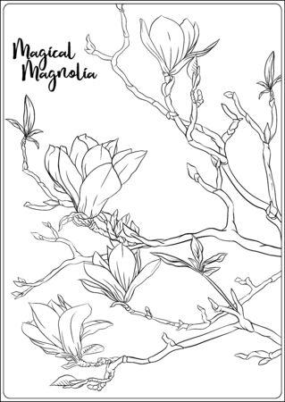 Rama de árbol de magnolia con flores. Página para colorear para el libro de colorear para adultos. Ilustración de vector de dibujo a mano de contorno. Ilustración de vector