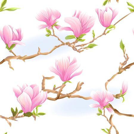 Rama de árbol de magnolia con flores. Patrón sin costuras, fondo. Ilustración de vector de color. Aislado sobre fondo blanco. Ilustración de vector