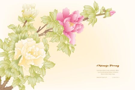 Peony tree branch with flowers in the style of Chinese painting on silk Template for wedding invitation, greeting card, banner, gift voucher, label. Colored vector illustration.. Illustration