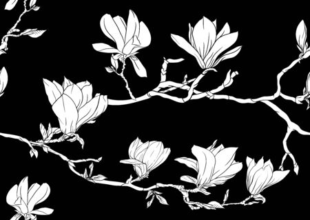 Magnolia tree branch with flowers. Seamless pattern, background. Black and white graphics. Vector illustration..