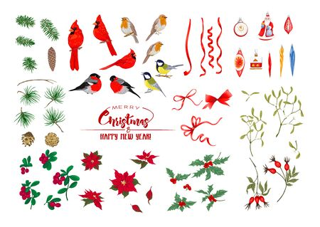 Winter birds, ribbons, Christmas decoration and wreath of spruce, pine, poinsettia, dog rose, cowberry, cranberry, fir. Set of elements for design. Colored vector illustration