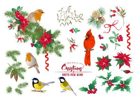 Pájaro tit, pájaro petirrojo, pájaro cardenal, corona navideña de abeto, pino, flor de pascua, rosa de perro, abeto. Conjunto de elementos para el diseño Ilustración de vector de color. Aislado sobre fondo blanco. .