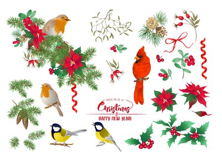 Tit bird, Robin bird, Cardinal bird, Christmas wreath of spruce, pine, poinsettia, dog rose, fir. Set of elements for design Colored vector illustration. Isolated on white background. .