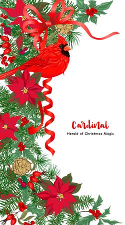 Cardinal bird and Christmas wreath of spruce, pine, poinsettia Template for card, banner, gift voucher, label. Colored vector illustration 向量圖像