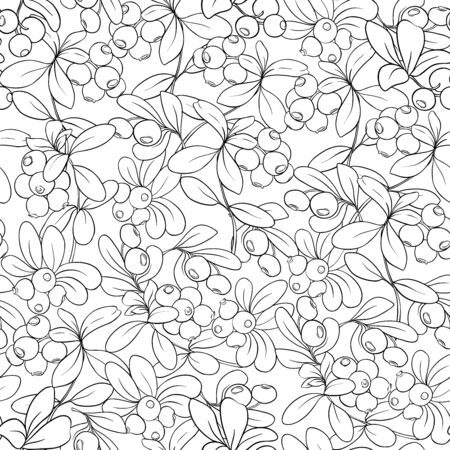 Cranberry. Seamless pattern, background. Outline hand drawing vector illustration Vettoriali