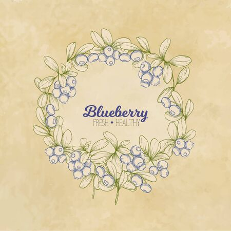 Blueberry. Element for design. Good for product label. Graphic drawing, engraving style. Colored vector illustration. On kraft background..