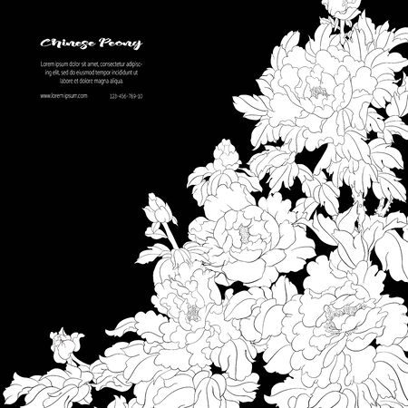 Peony tree branch with flowers in the style of Chinese painting on silk Template for wedding invitation, greeting card, banner, gift voucher, label. Black and white vector illustration