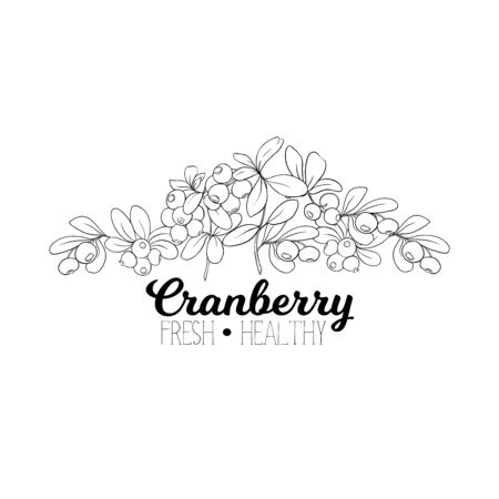 Cranberry. Element for design. Good for product label. Outline hand drawing vector illustration..