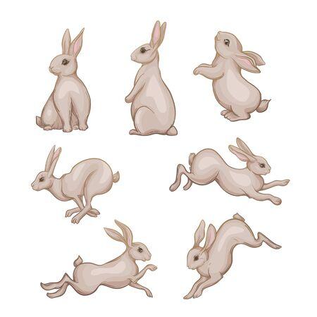 Set of seven cute hares, rabbits. Vector illustration. Illustration