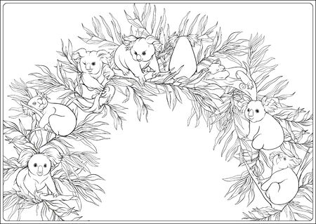Koala and eucalyptus. Coloring page for the adult coloring book. Outline hand drawing vector illustration.. Vektorové ilustrace