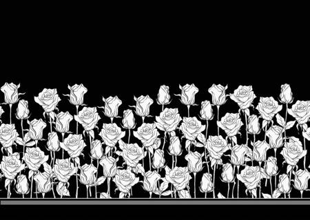 Black and white roses seamless pattern, background. Black and white graphics. Vector illustration.. Иллюстрация