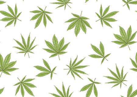 Cannabis leaves seamless pattern, background. Vector illustration in green colors Isolated on white background.