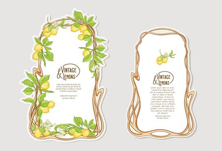 Set of frames in art nouveau style with lemon fruits and flowers branches. Good for product label. Colored vector illustration.. Vettoriali
