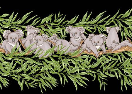 Koala bear seamless pattern. Colored vector illustration. Isolated on black background.
