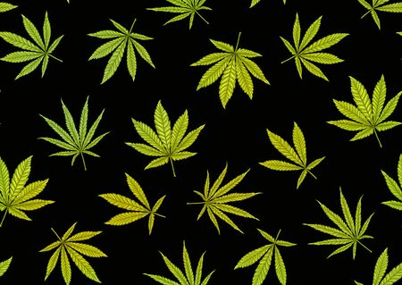 Cannabis leaves seamless pattern, background. Vector illustration in green colors Isolated on black background.