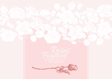 Roses flowers Template for product label, cosmetic packaging, for wedding invitation, greeting card, banner, gift voucher. Easy to edit. Colored vector illustration..