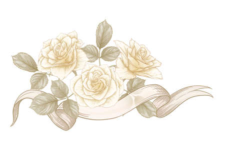 Bouquet of roses. Elements for design. Classic botanical drawing, engraving style. Vector illustration.