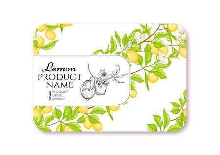Lemon. Ripe citrus. Template for product label, cosmetic packaging. Easy to edit. Graphic drawing, engraving style. Vector illustration.