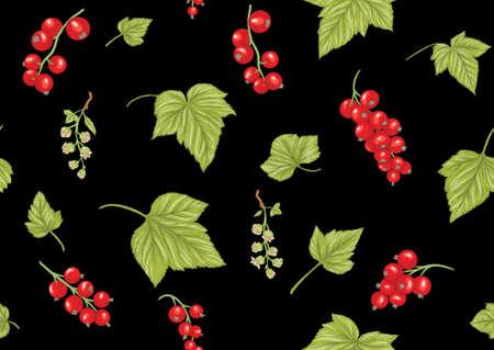 Redcurrant red ribes. Ripe berries. Seamless pattern, background. Vector illustration. In botanical style on black background Vektoros illusztráció