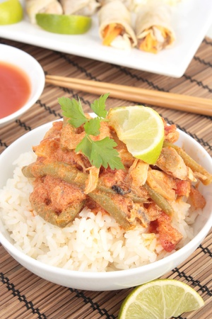 Thai chicken curry with spring rolls Stock Photo