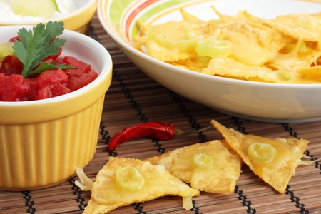 A bowl of nachos with salsa. Stock Photo - 12064826