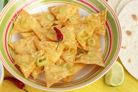 A bowl of nachos with tortillas. photo