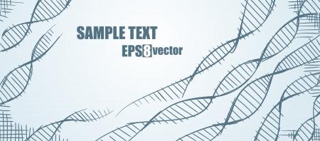 DNA  Molecule Stock Vector - 15251749