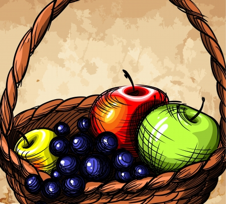 Basket with fruit. Vector