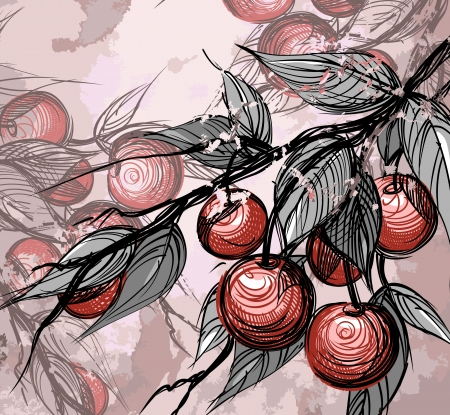 Cherries with leaves Vector