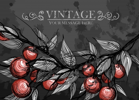 Cherries with leaves Stock Vector - 16912523