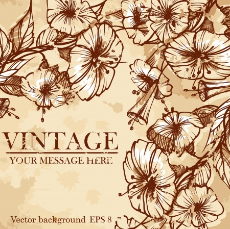 Stylish floral background, retro flowers. Stock Vector - 16912660