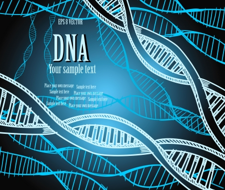 DNA strands. Vector illustration. Eps 8. Vector