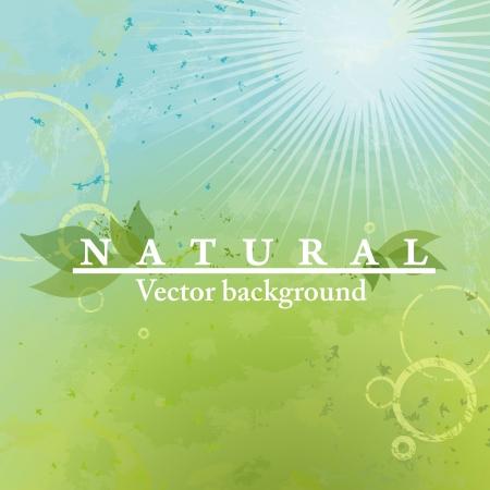nature background: Fresh green leaves on natural background. Vector illustration. Eps 10.
