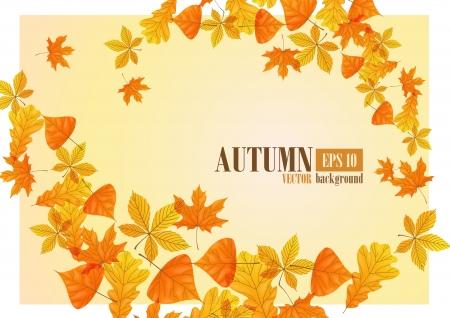 Autumn background Stock Vector - 16940109