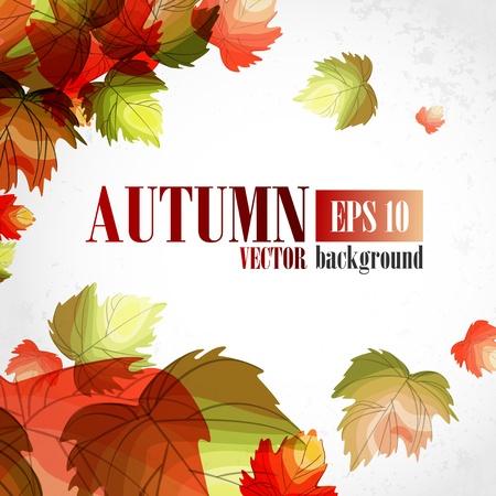 Autumn background Stock Vector - 16951999