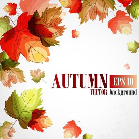Autumn background.  illustration.   Illustration